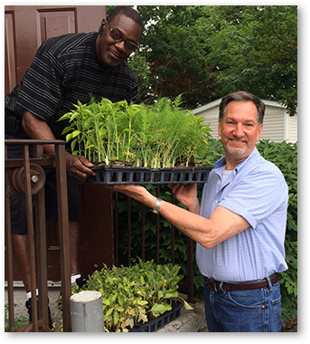 A Story of Collaboration and Seedlings