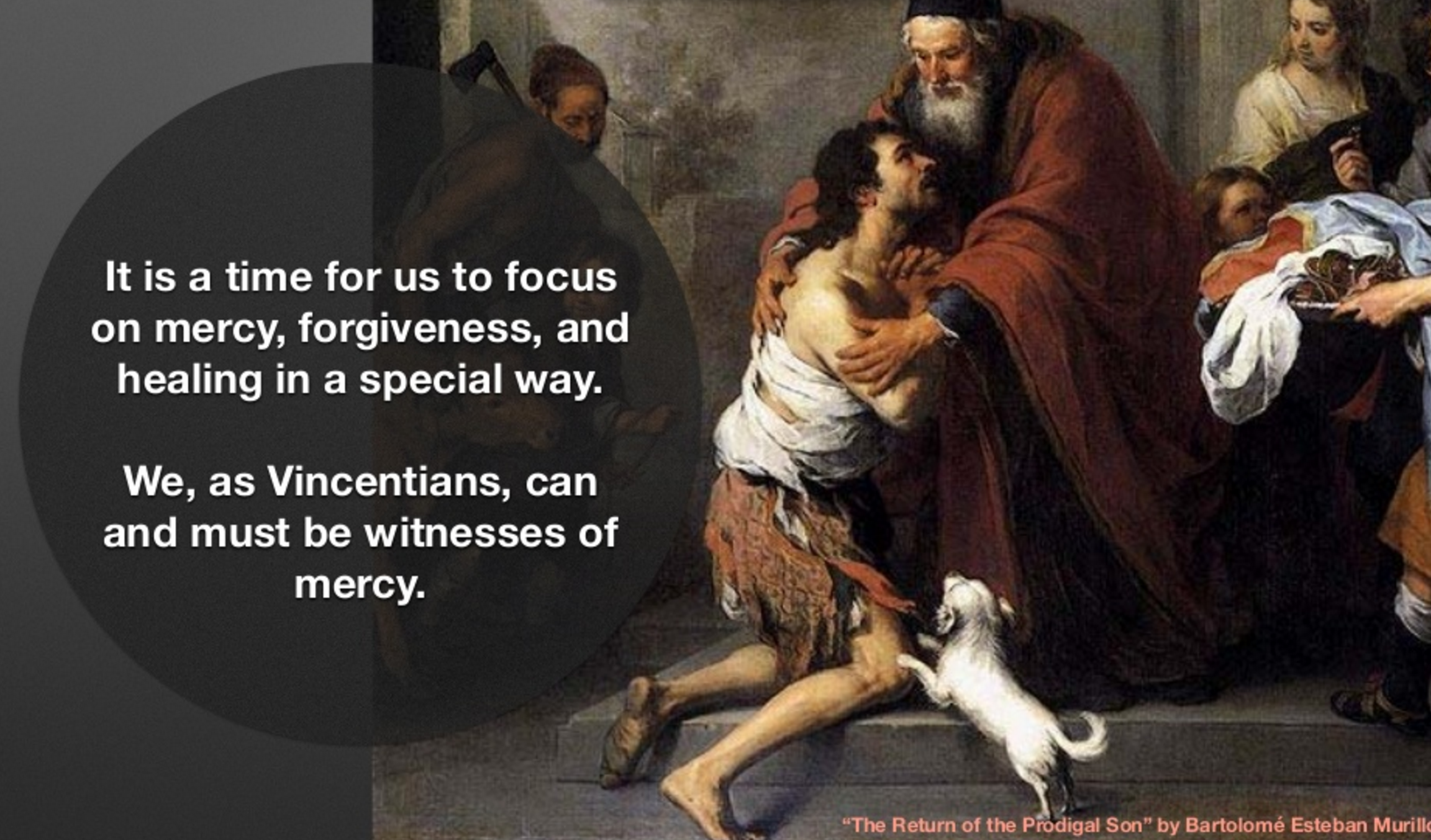 Year of Mercy – special concern of Vincentians