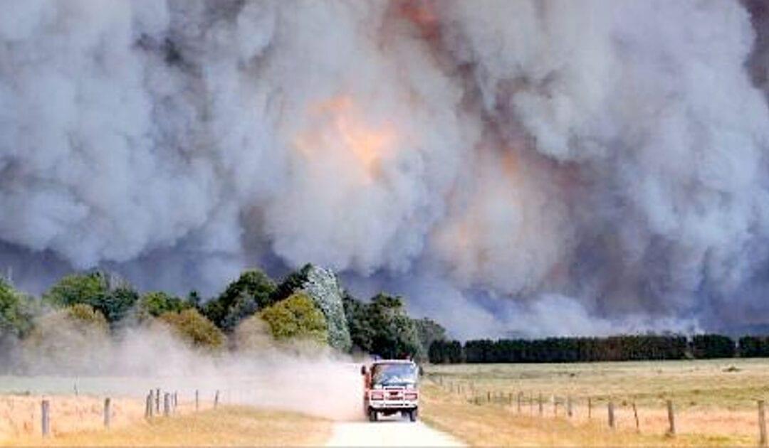 Australian Bushfire. The Dreadful Face of the Climate Change.