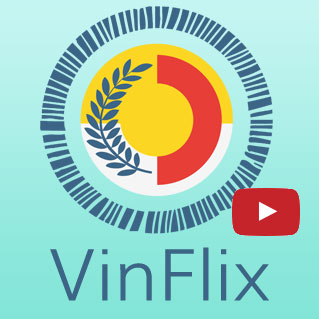 VinFlix