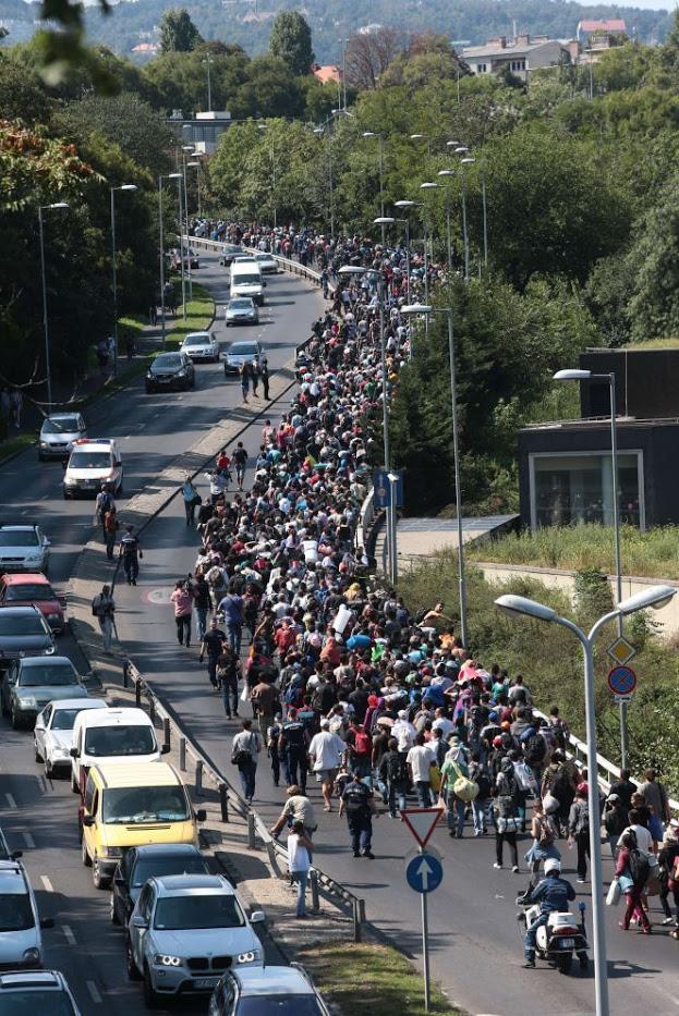 Solidaridad ante el éxodo dramático de los refugiados y desplazados