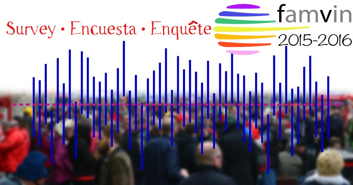 El año de la Colaboración de la Familia Vicenciana – Encuesta
