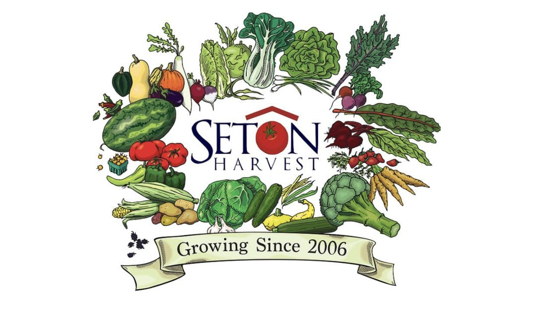 La hidroponía llega a Seton Harvest