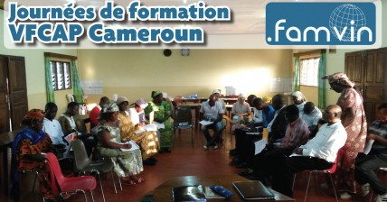 Cameroon_highlight_french