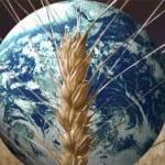 Giornata Mondiale dell'alimentazione 2011
