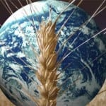 Malnutrizione, progressi in Asia e sfide per l'Africa