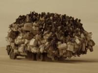 MoveOn-truck-320