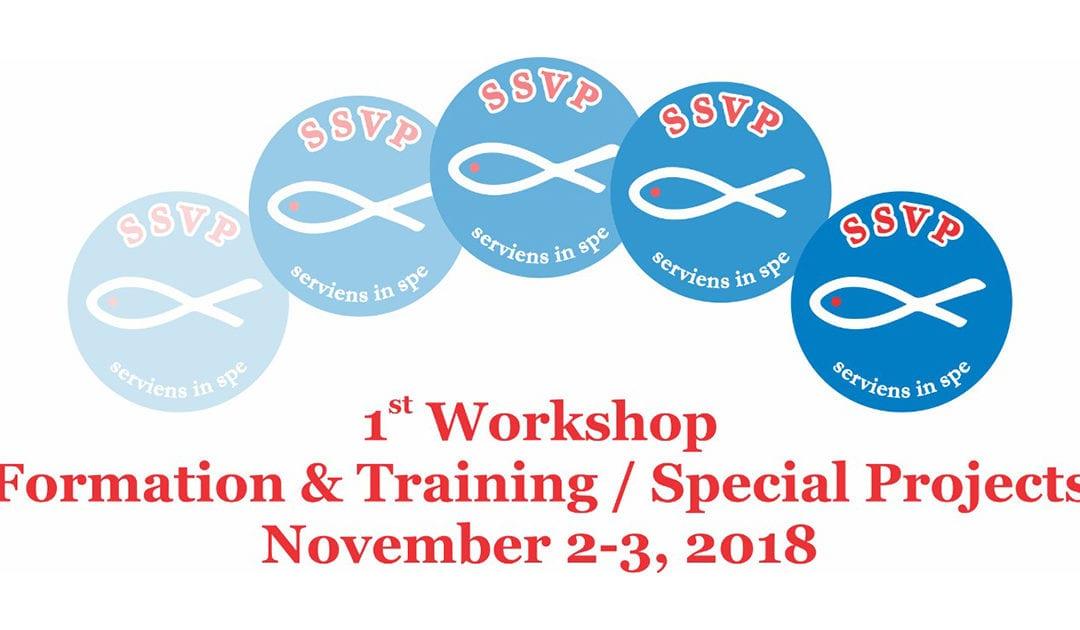 Conselho Geral da SSVP promove, em Madri, reuniões de trabalho sobre projetos especiais e formação