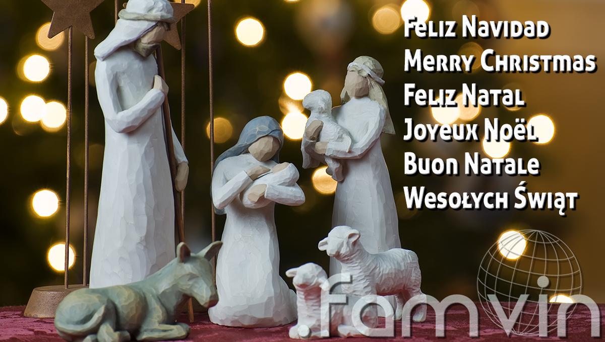 Feliz e solidário Natal por parte da equipe .famvin