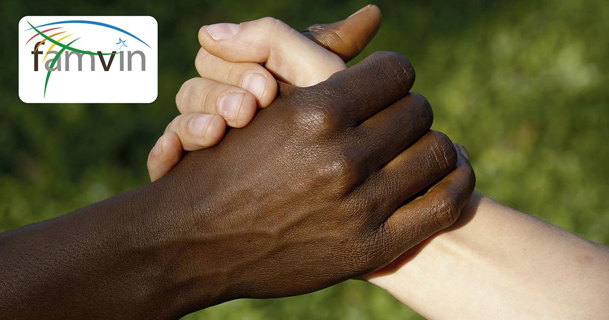 Declaração da Família Vicentina ante a discriminação racial