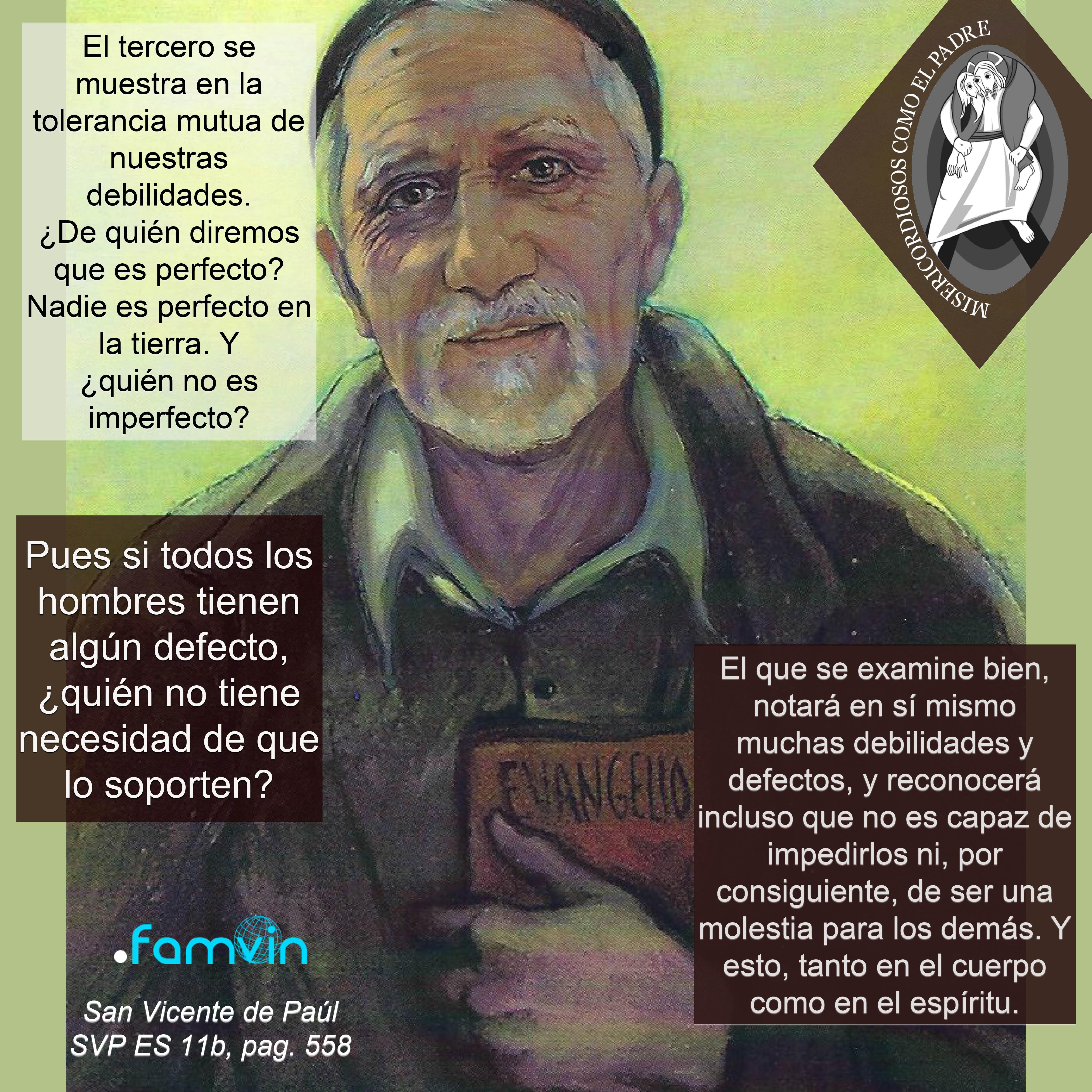 El Año de la Misericordia para Vicencianos 26.07.2016