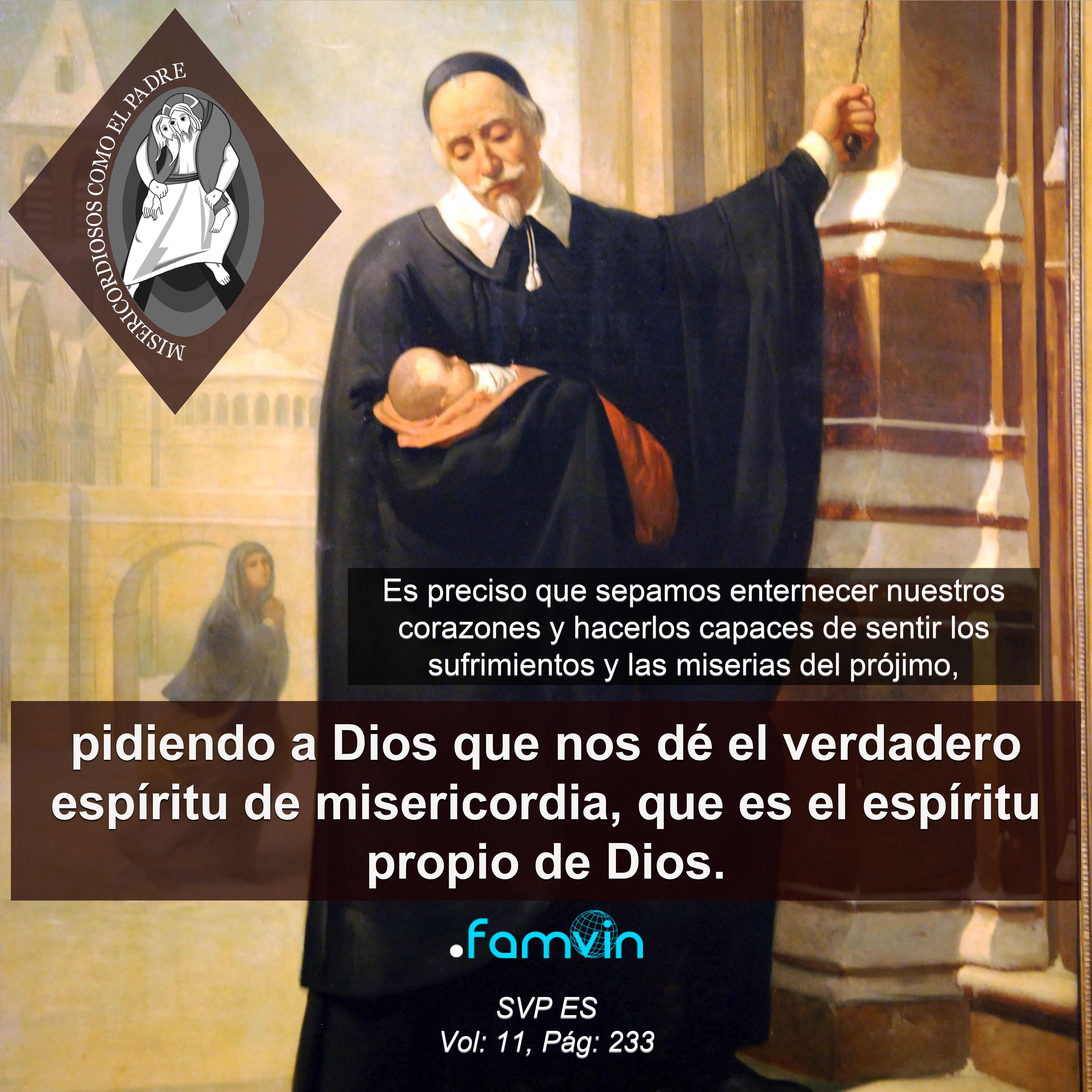 El Año de la Misericordia para Vicencianos 15.11.2016
